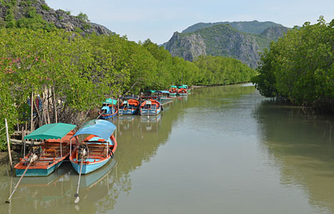 Naturen i Khao Sam Roi Yod National Park